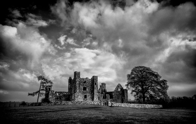 bective abbey field trip