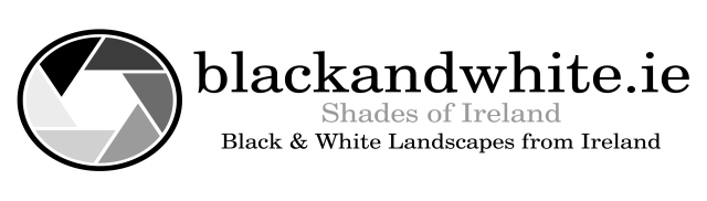 blackandwhite_ie_new_logo